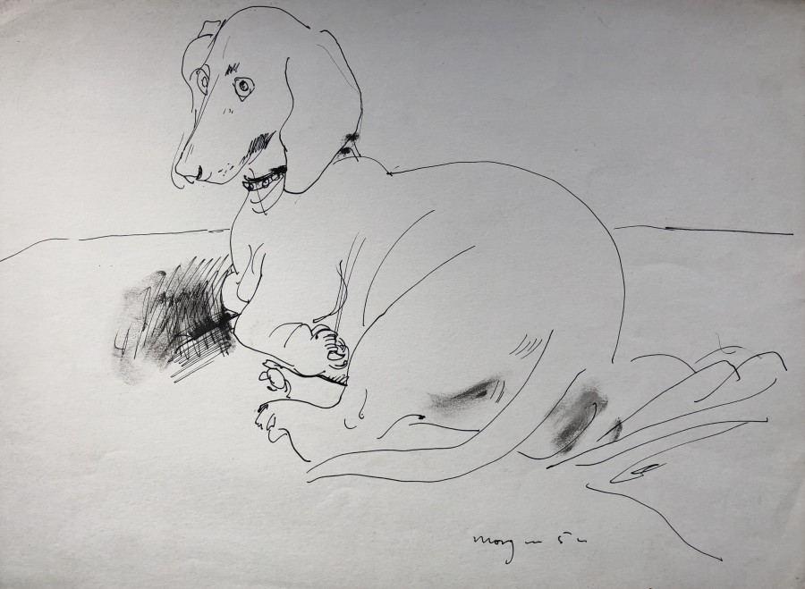 Glyn Morgan, Dachshund, 1952