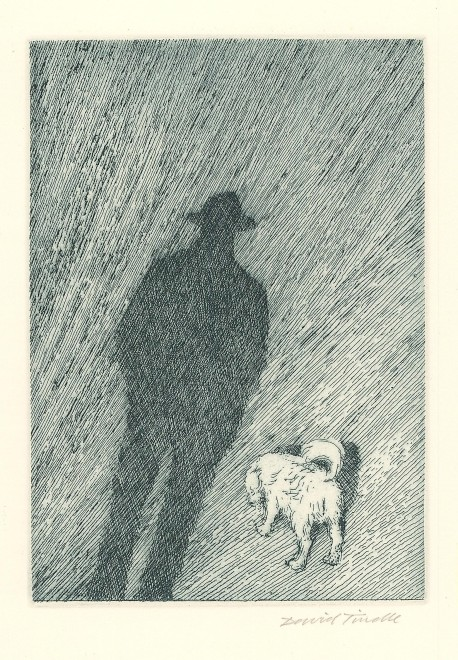 My Shadow and the Dog