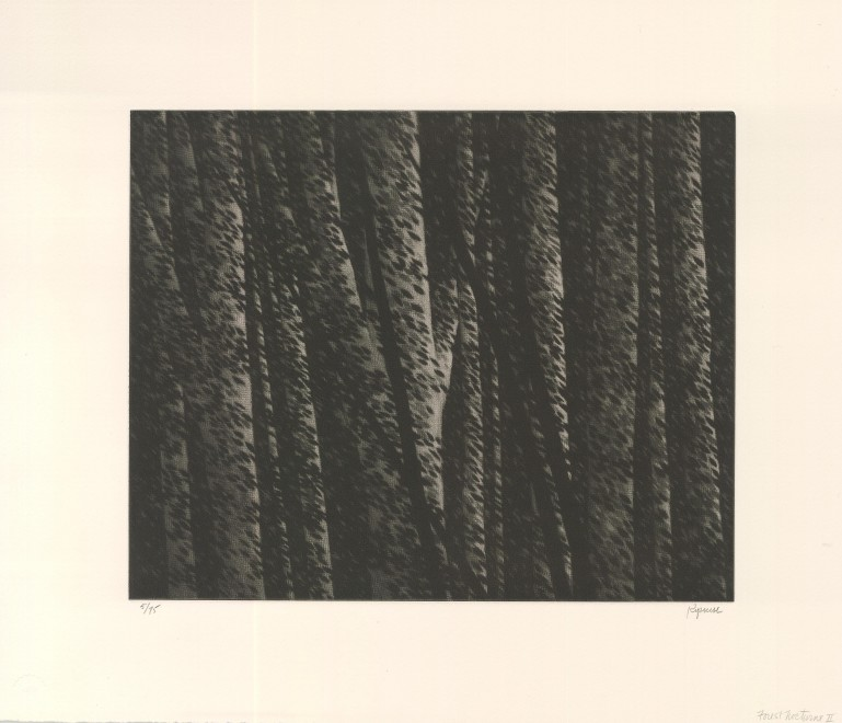 Forest Nocturne II