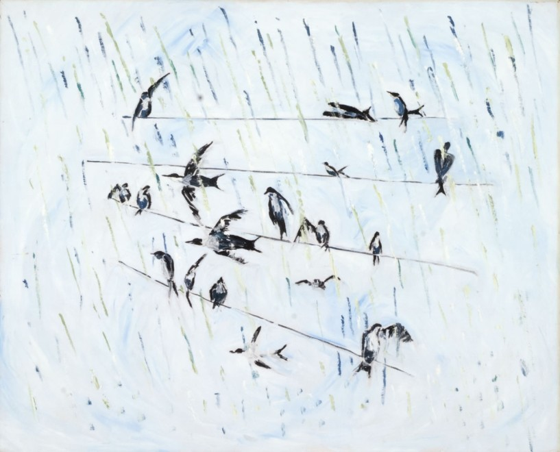 Swallows in Rain