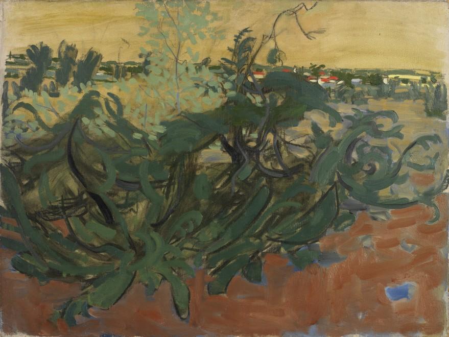 Landscape near Saint-Matre