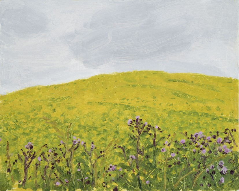 Yellow Hill and Flowers