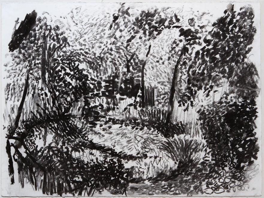 Garden XIV