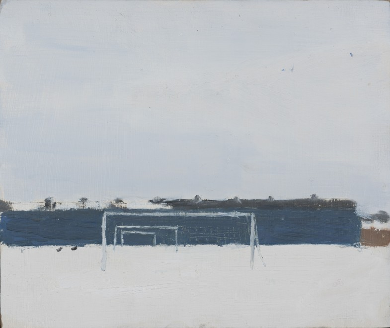 Football Pitches under Snow