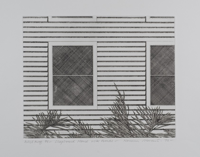 Clapboard House with Fronds