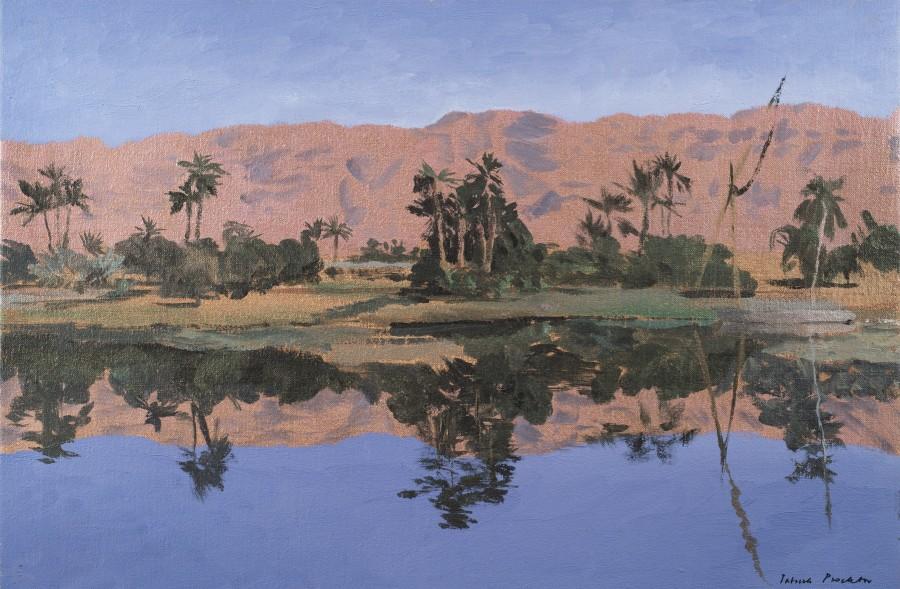 The Nile near Edfu