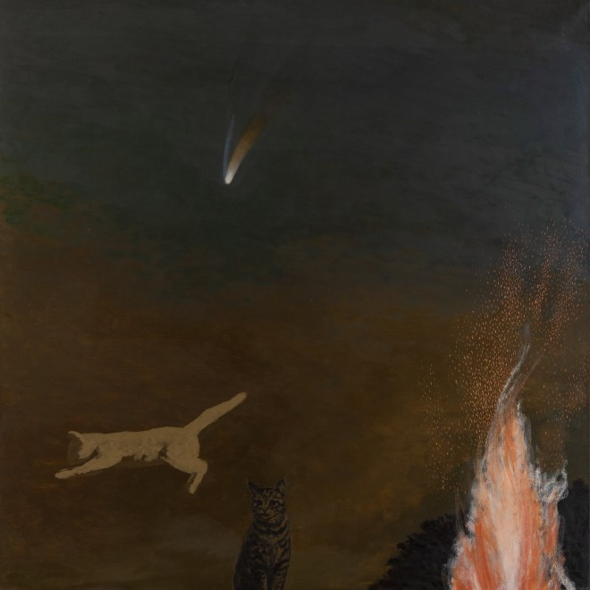 Leaping Cat and Comet