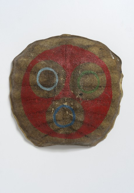 Untitled (turtle shell)