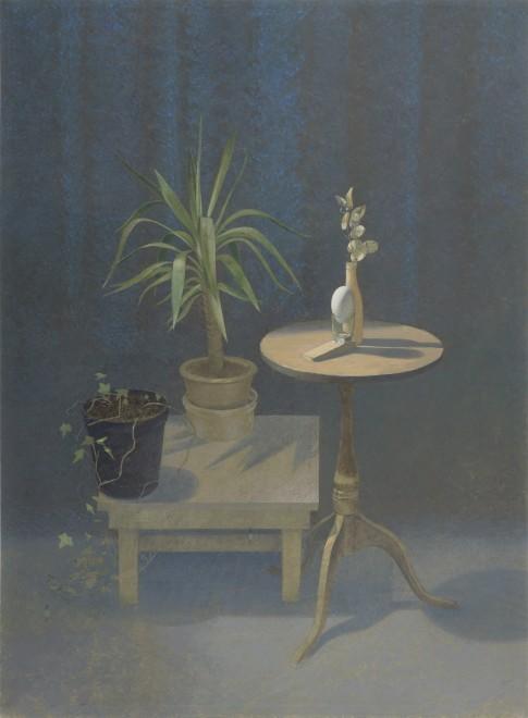 Still Life by Artificial Light