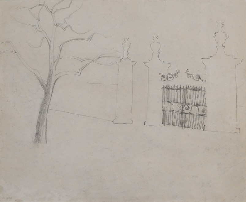 Untitled (gate and tree)
