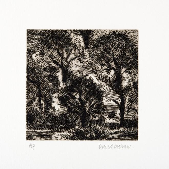 "<span class=""artist""><strong>David Inshaw</strong></span>, <span class=""title""><em>Trees</em>, 2010</span>"