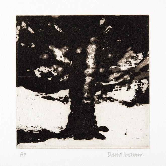 "<span class=""artist""><strong>David Inshaw</strong></span>, <span class=""title""><em>The Tree</em>, 2010</span>"