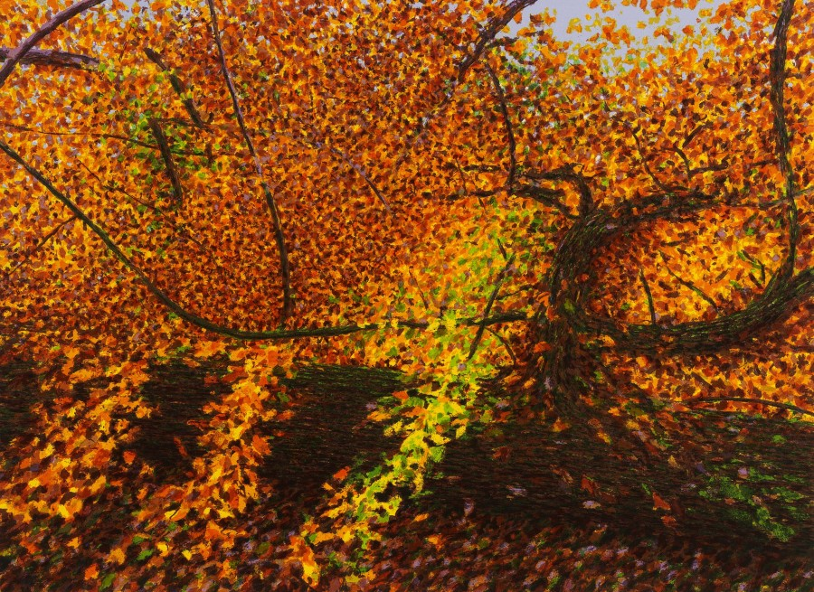 Fallen Tree, Kensington Gardens