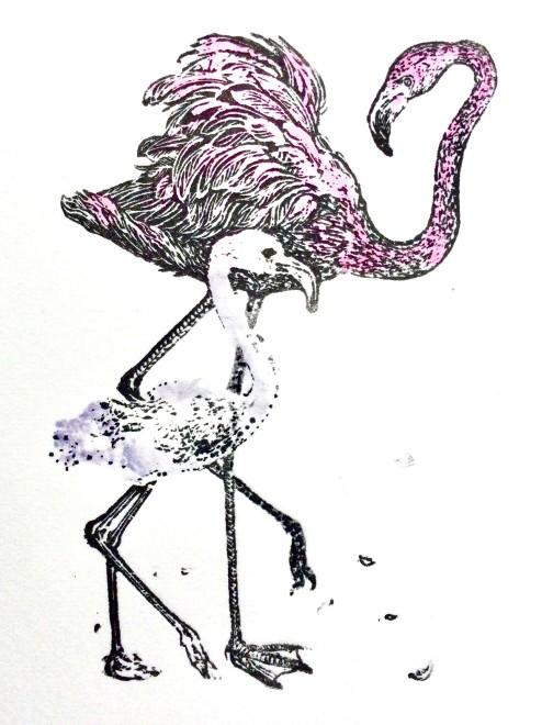 Ann Tout RE, Flamingo