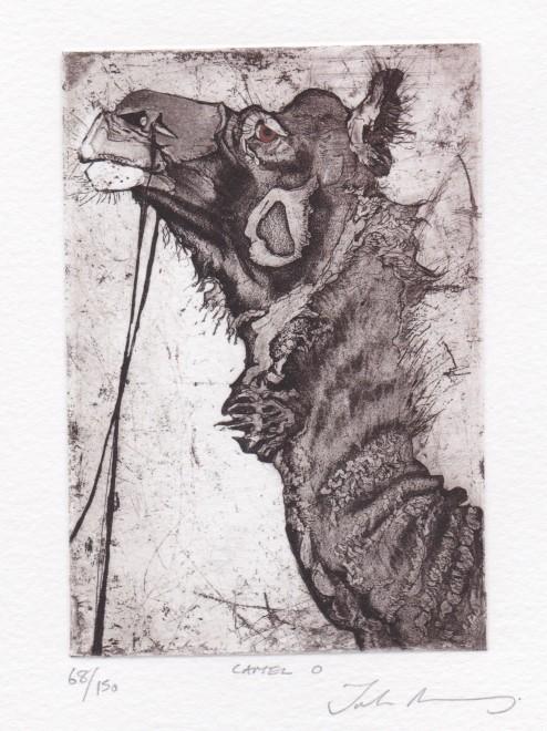 Julia Manning RE, Camel O
