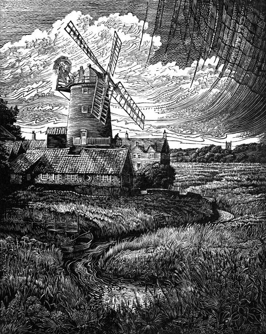 Windmill & Reedbeds