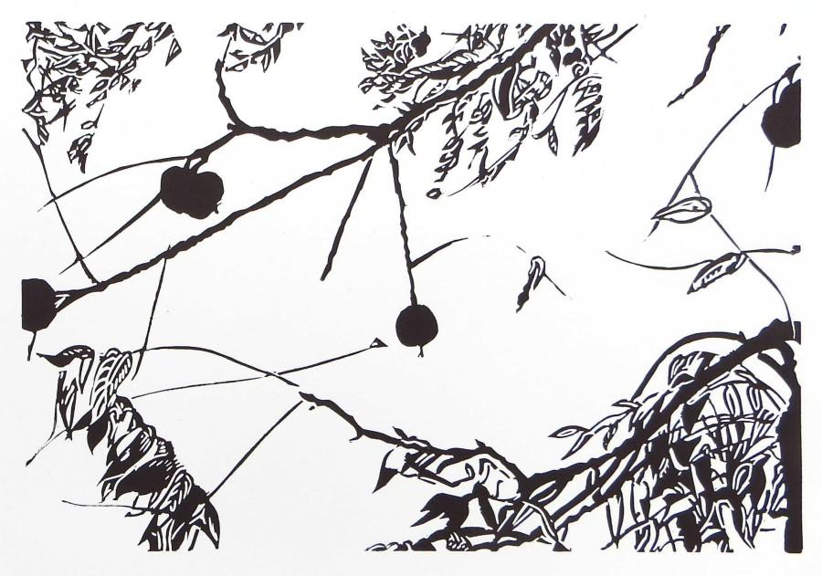 Sasa Marinkov RE, The Walnut Tree
