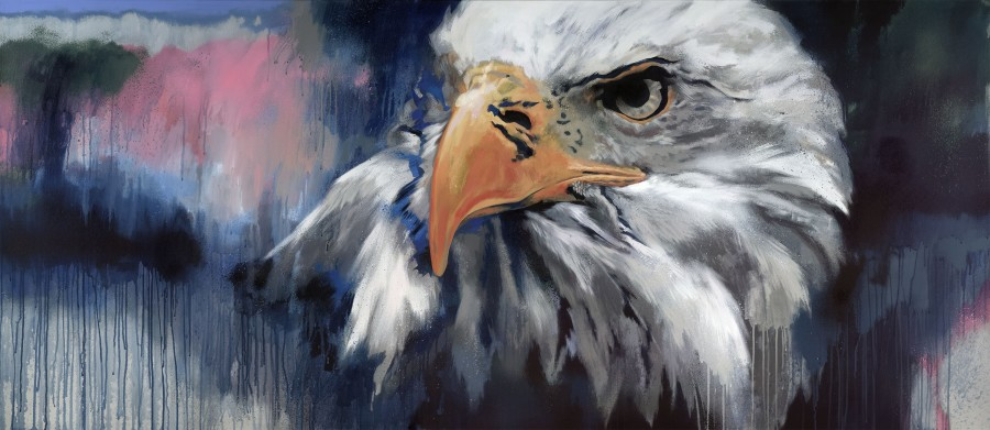 Jim Starr, Bald Eagle