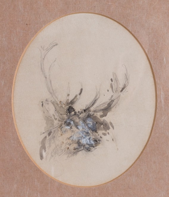 William Woodhouse, studies of a stag