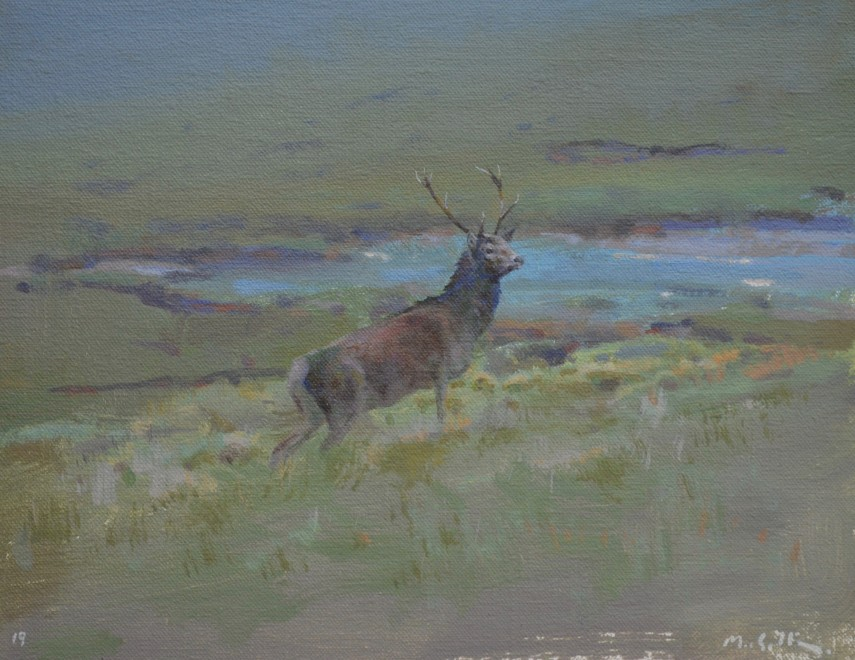Travelling Stag