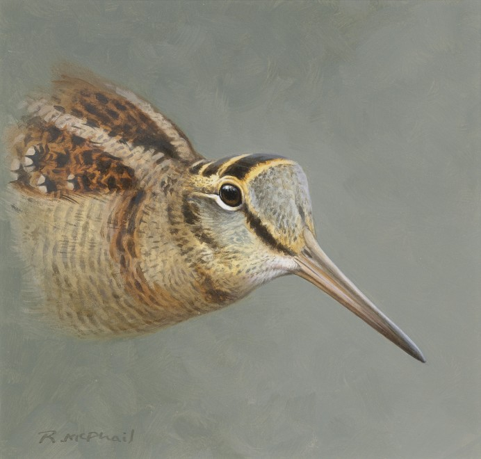 Rodger McPhail, Woodcock head