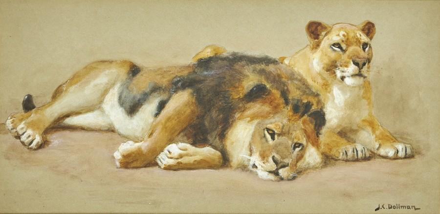 John Charles Dollman, R.W.S., R.I., R.O.I., Lion and lioness