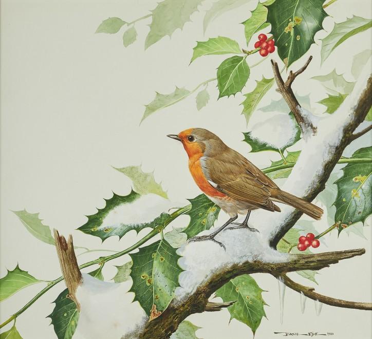 Basil Ede, Winter Robin