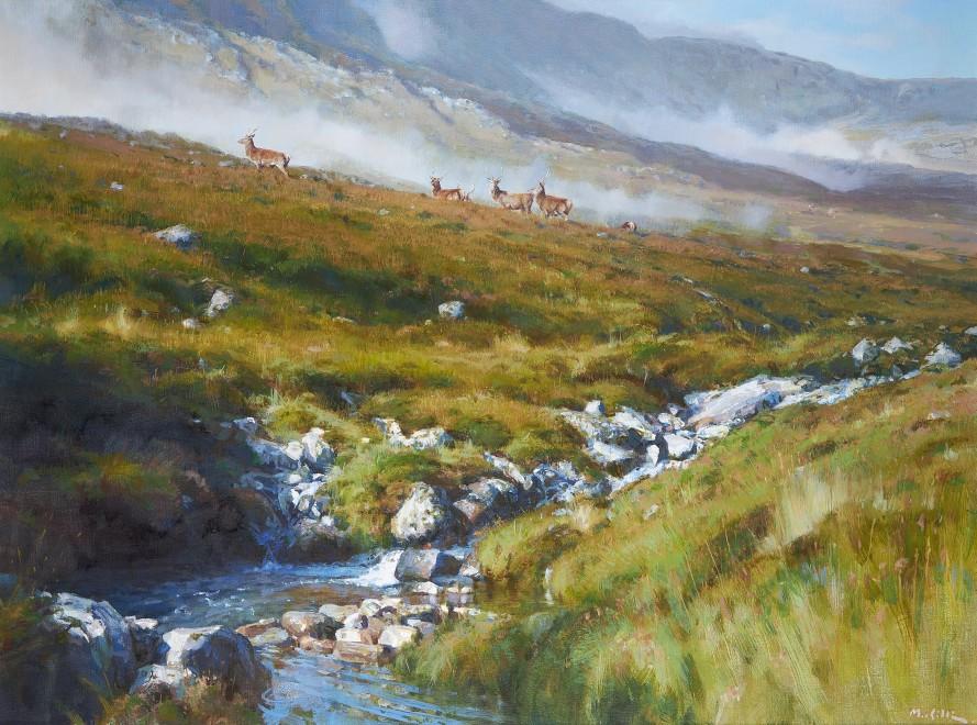 Ian MacGillivray, The Hill