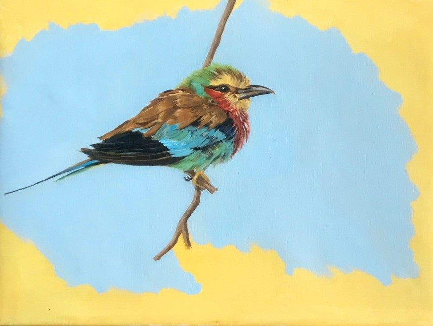 Francesca Sanders, After a rainstorm, ruffled lilac breasted Roller