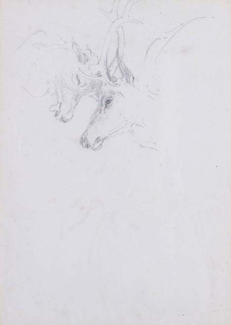 William Woodhouse, Double-sided Stalking study I