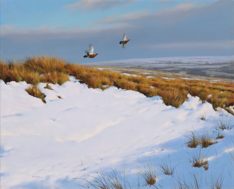 Rodger McPhail, Snow drift
