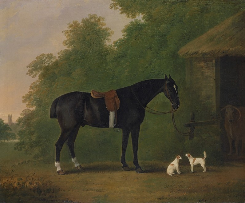 Bay horse with two terriers before a stable