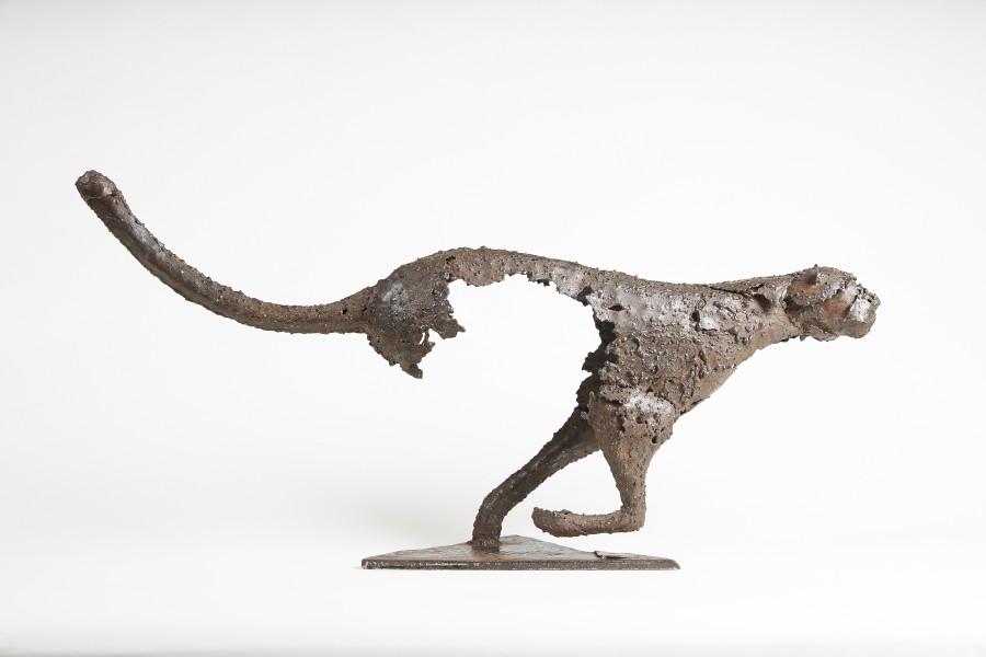 Pascal Chesneau, Cheetah