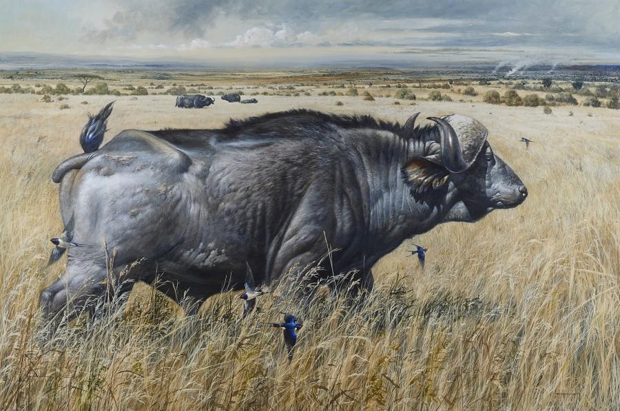Bryan Hanlon, Four Dugger boys and European Swallows, Masai Mara