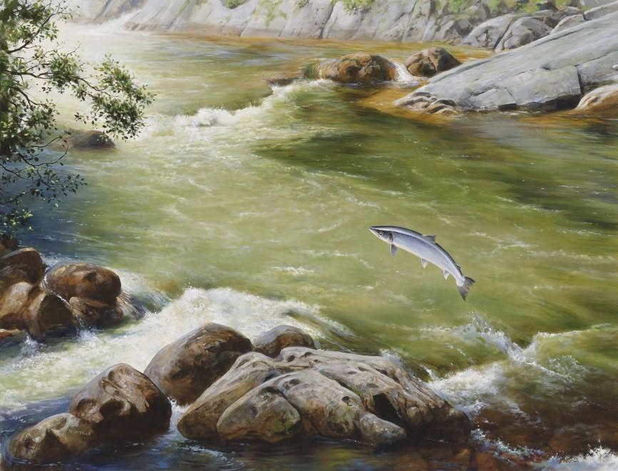 Rodger McPhail, Running Salmon