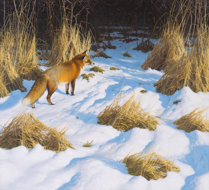 Chris Rose, Winter fox