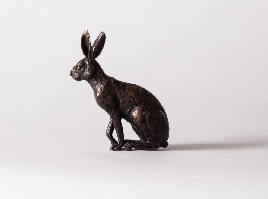 Camilla Le May, Little Hare