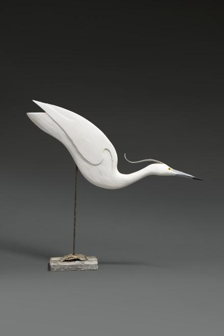 Stephen Henderson, Freak little Egret