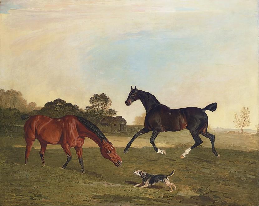 Benjamin Marshall, Hunters at grass