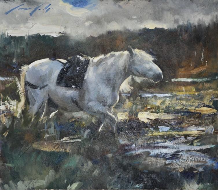 Marcus Hodge, Highland stalking pony