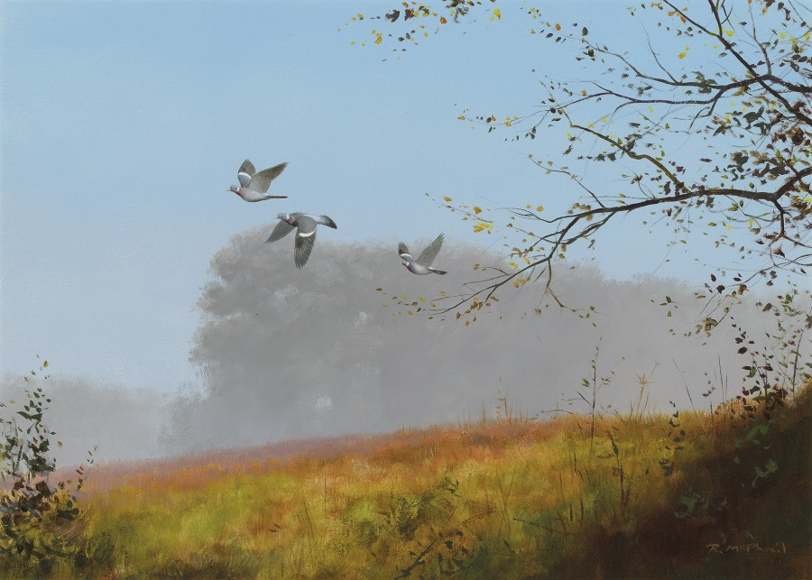 Rodger McPhail, Wood Pigeon