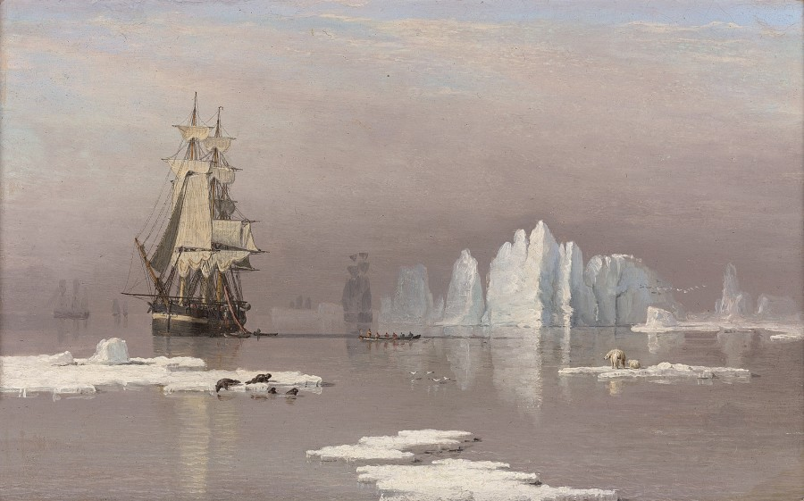 The whaling ships Swan and Isabella in the Arctic, with polar bears and seals