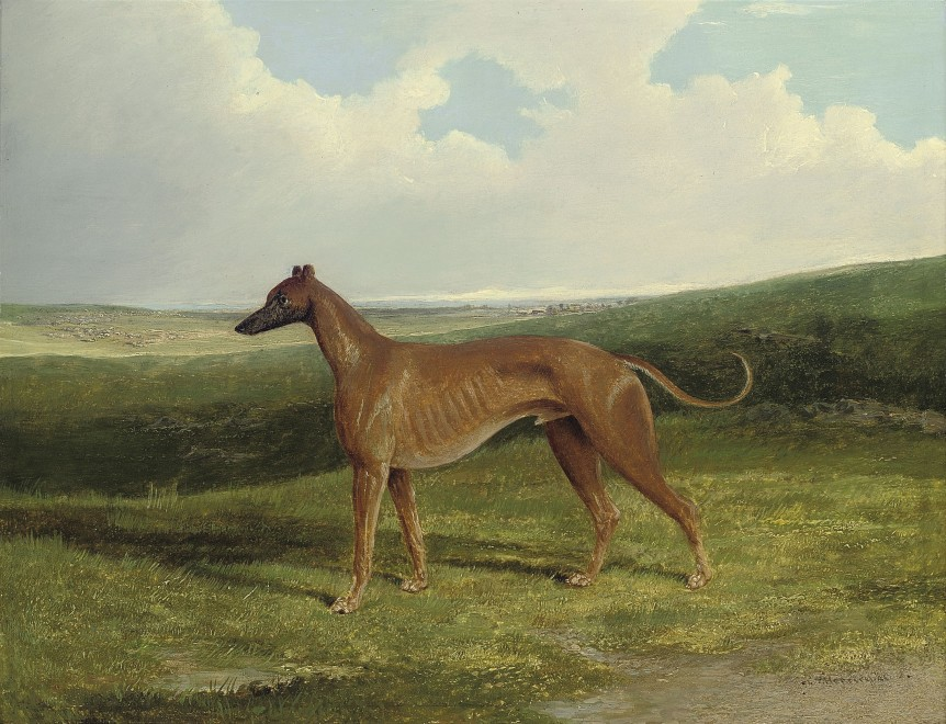 John Frederick Herring Snr, A champion greyhound in a landscape
