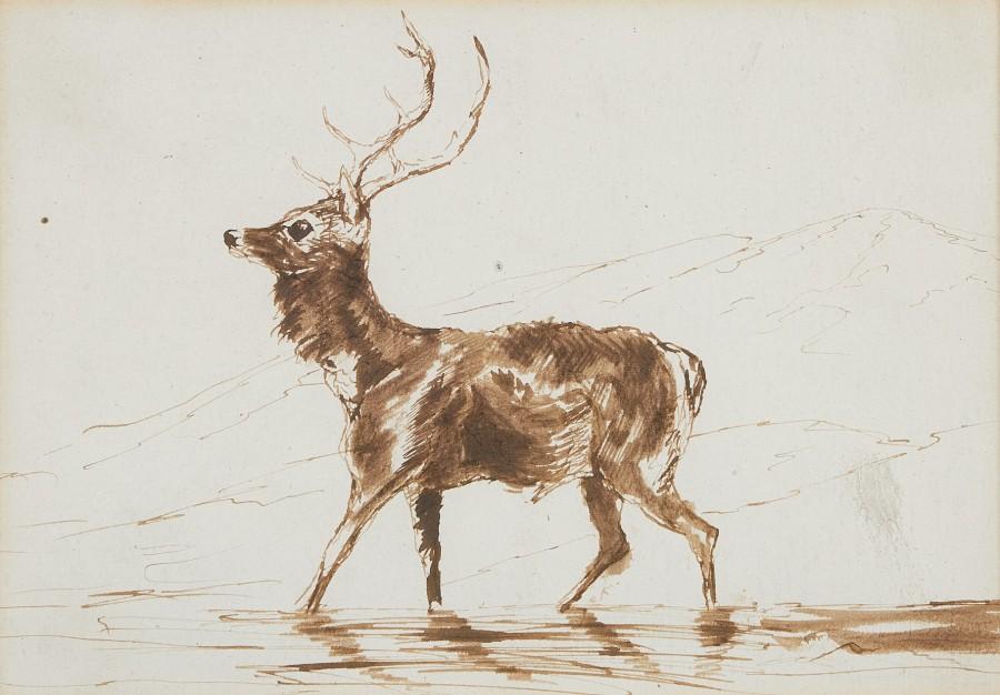 Sir Edwin Landseer, RA, Stag study