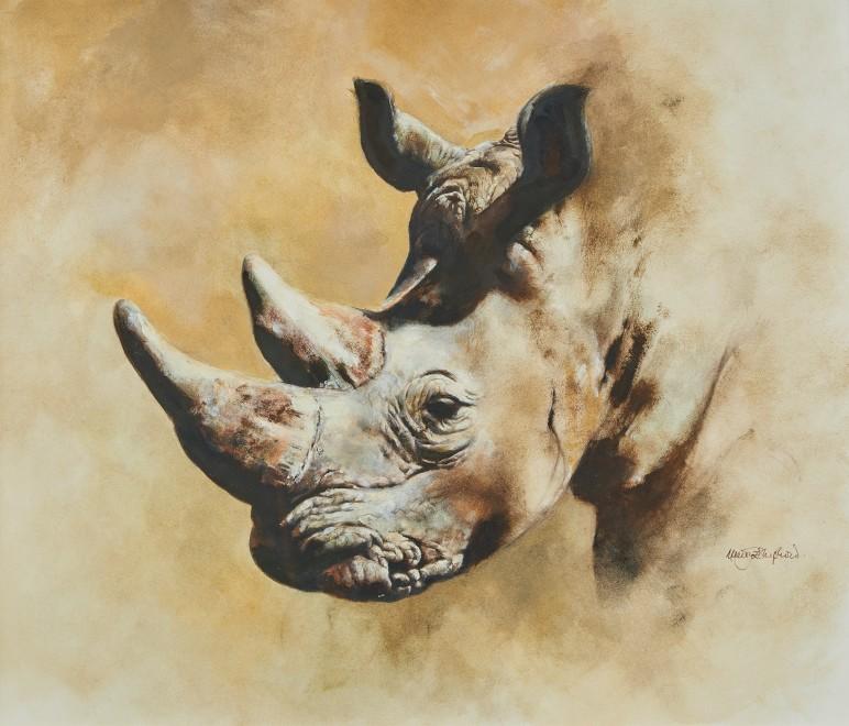 Mandy Shepherd, Rhino