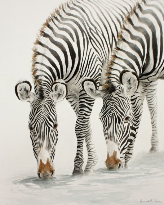 Annabel Pope, Zebra at the waterhole