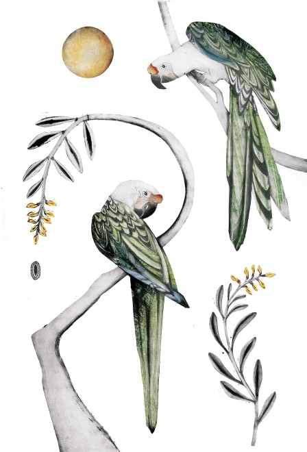 Beatrice Forshall, Great green Macaw III