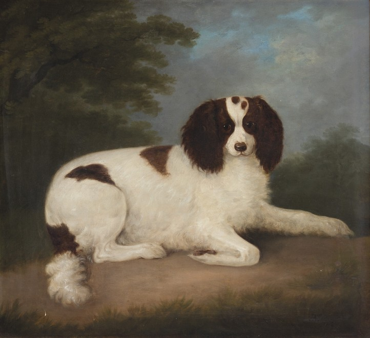 Francis Sartorius Snr, A liver-and-white English Springer Spaniel sitting by a fowling-piece, a shot -flask and a cock pheasant in a wooded landscape