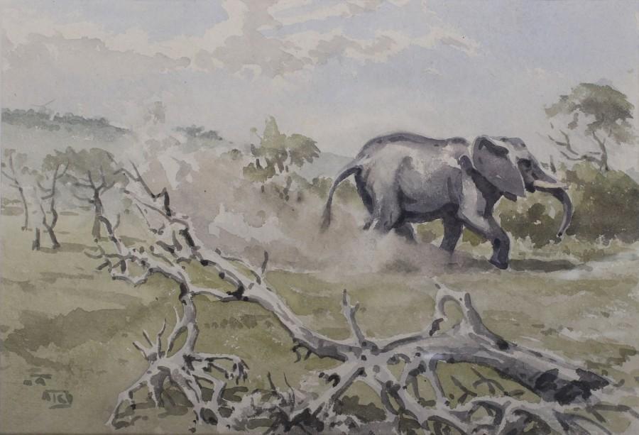 Richard Barrett Talbot Kelly, Uganda elephant