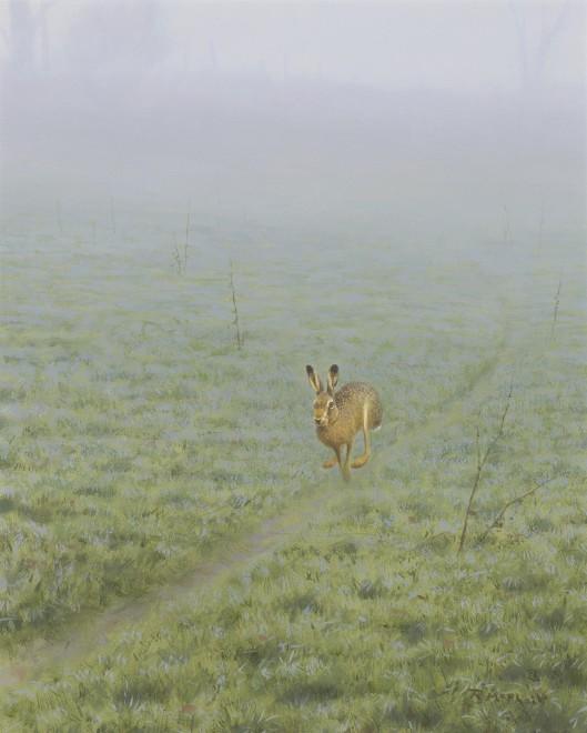 Rodger McPhail, Hare on track